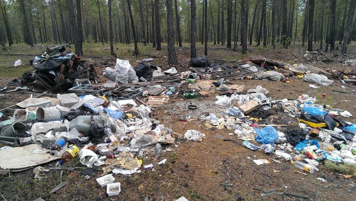 выбрасывание мусора в неположенном месте