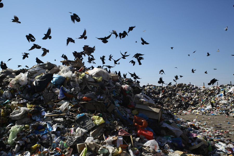 проблема отходов в россии