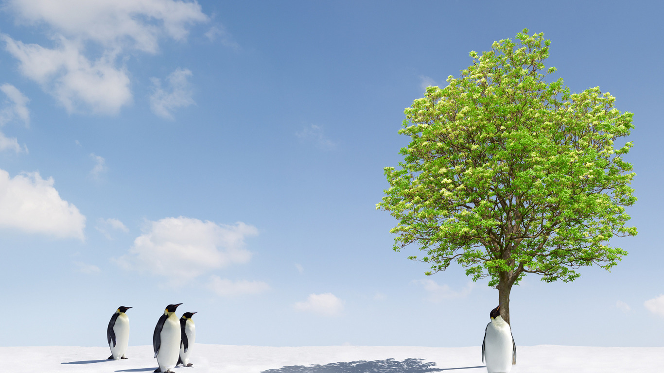 новые экологические проблемы