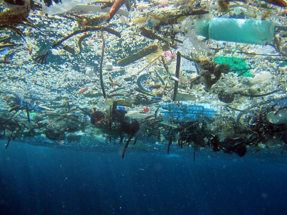 пластиковые отходы в мировом океане