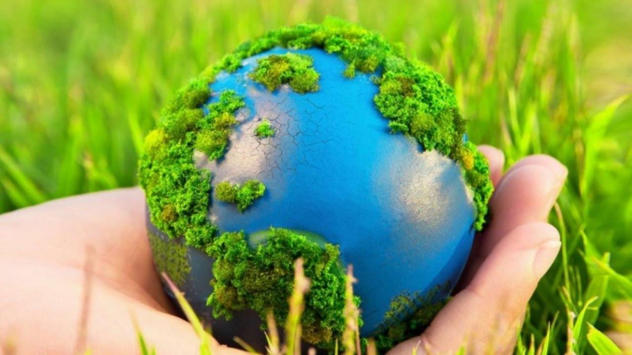 экологические обозначения