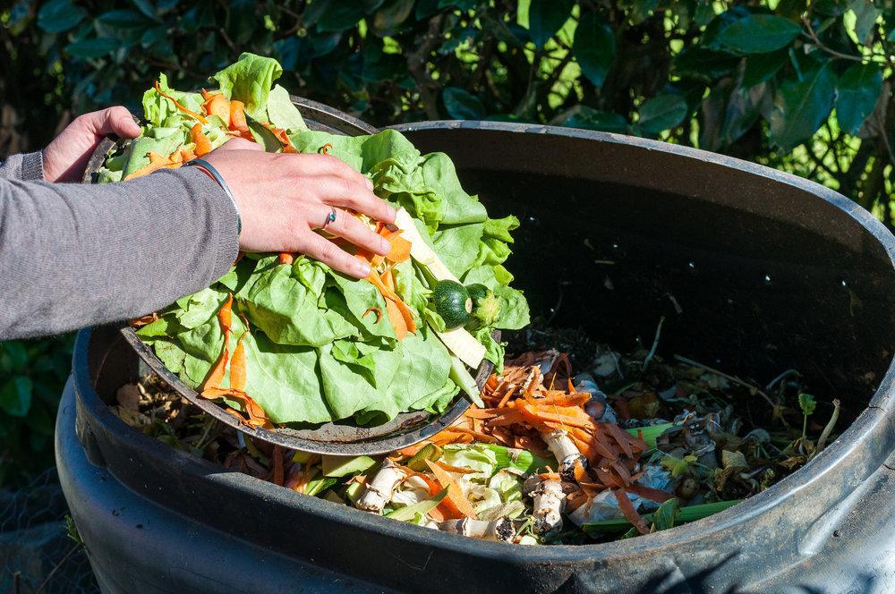 процент отходов продуктов питания