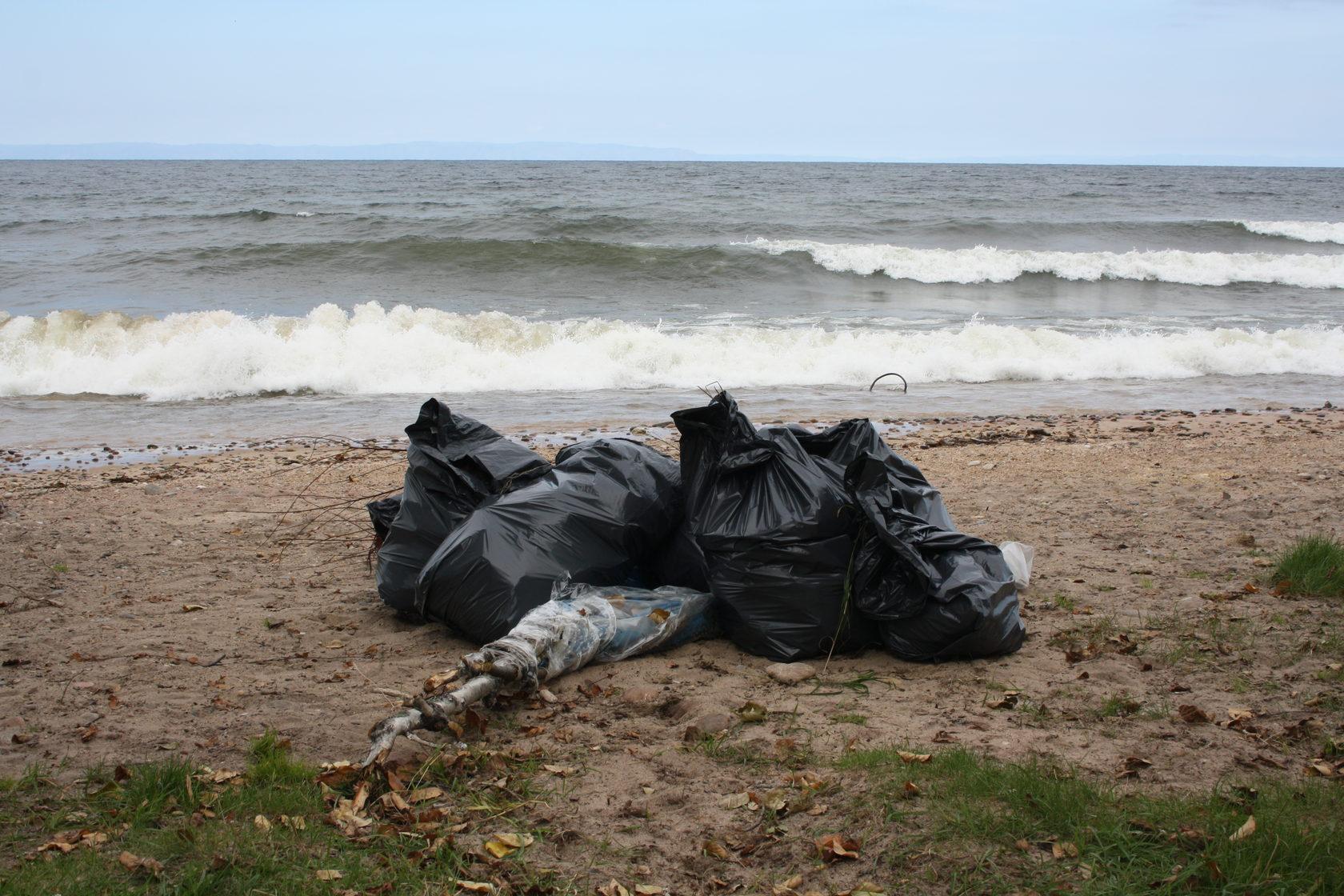 Сколько лет разлагается мусор