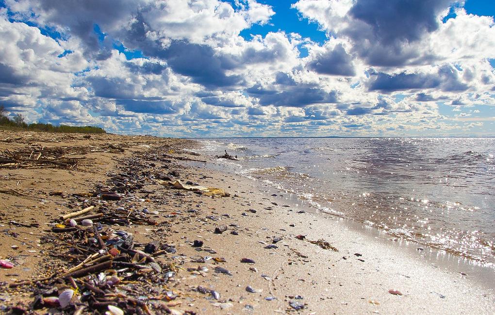 загрязнение почвы и воды