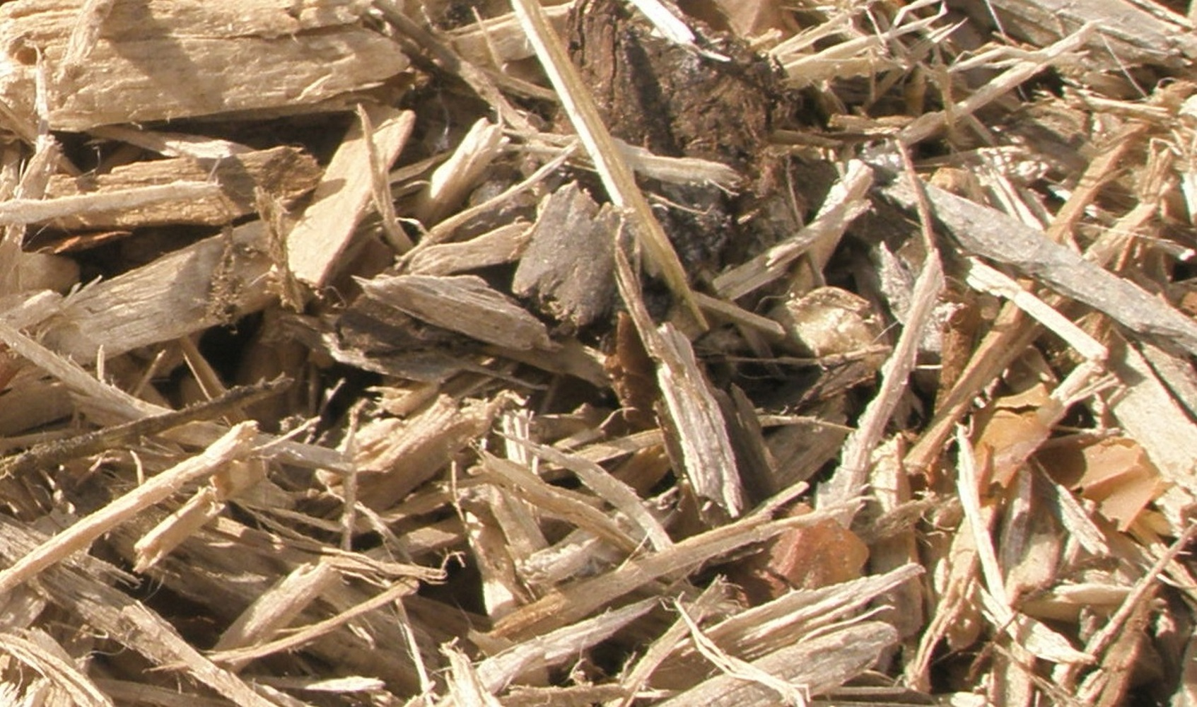 древесные отходы