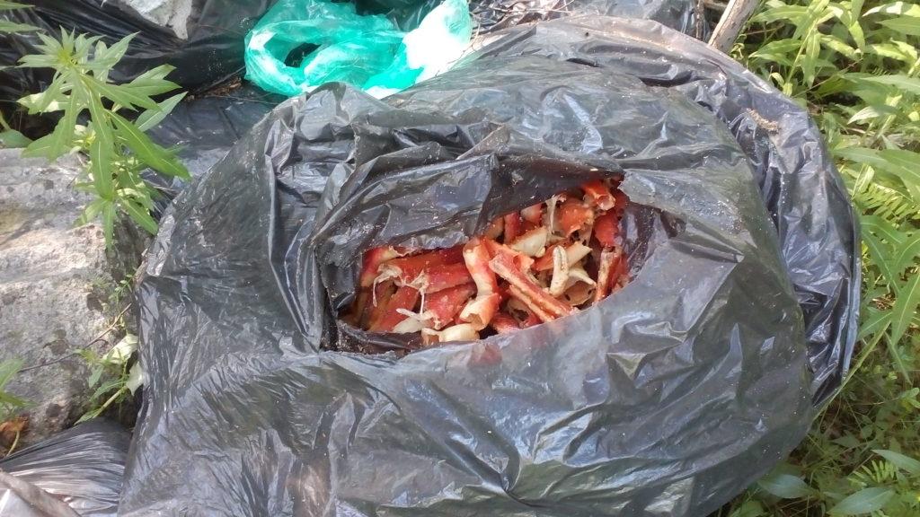 Биологические отходы должны помещаться в пакеты