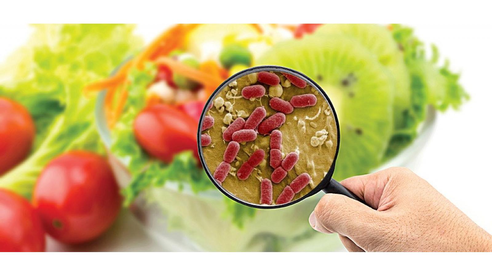 Заражение продуктов микробами
