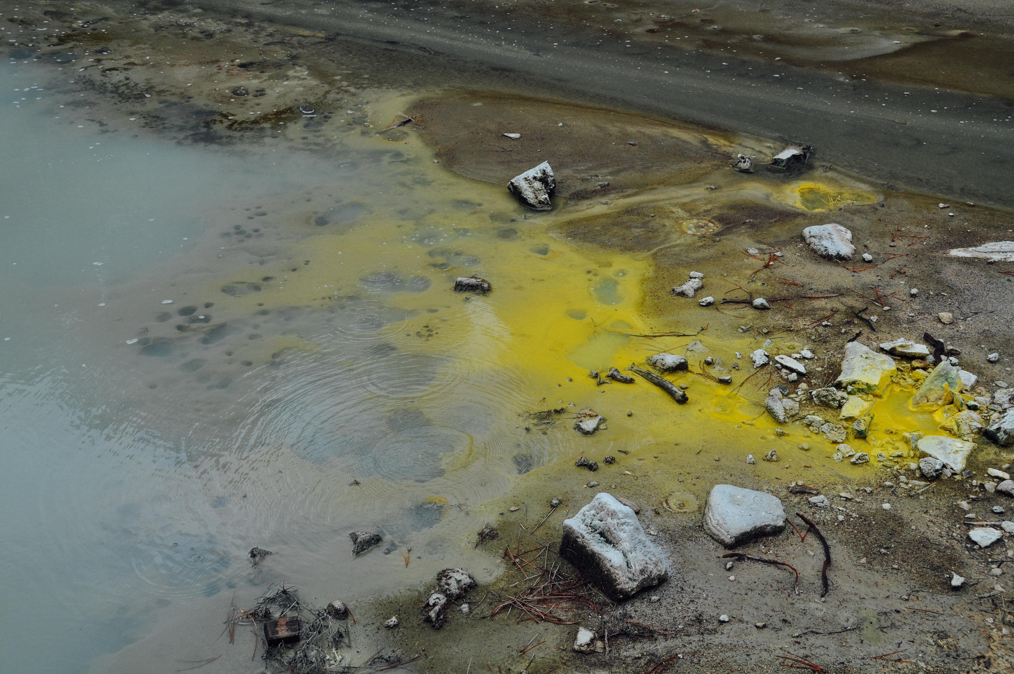 органическое загрязнение воды