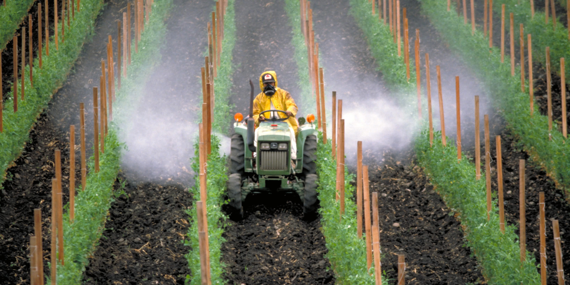 пестициды и удобрения в сельском хозяйстве