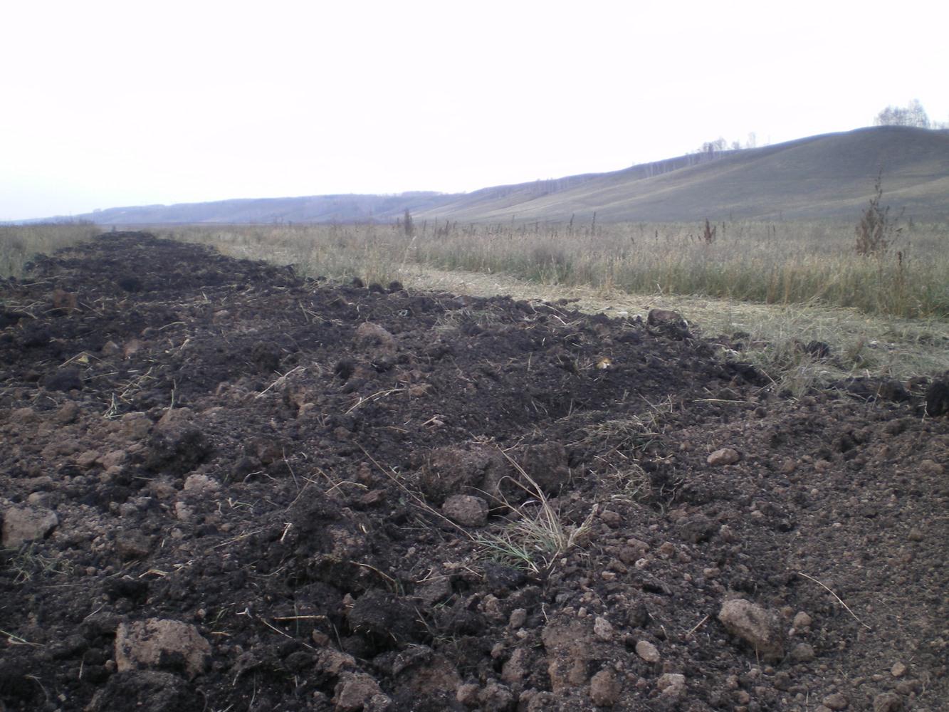 почва загрязненная тяжелыми металлами