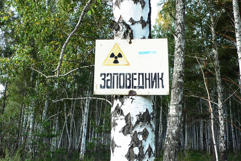 табличка радиационная опасность