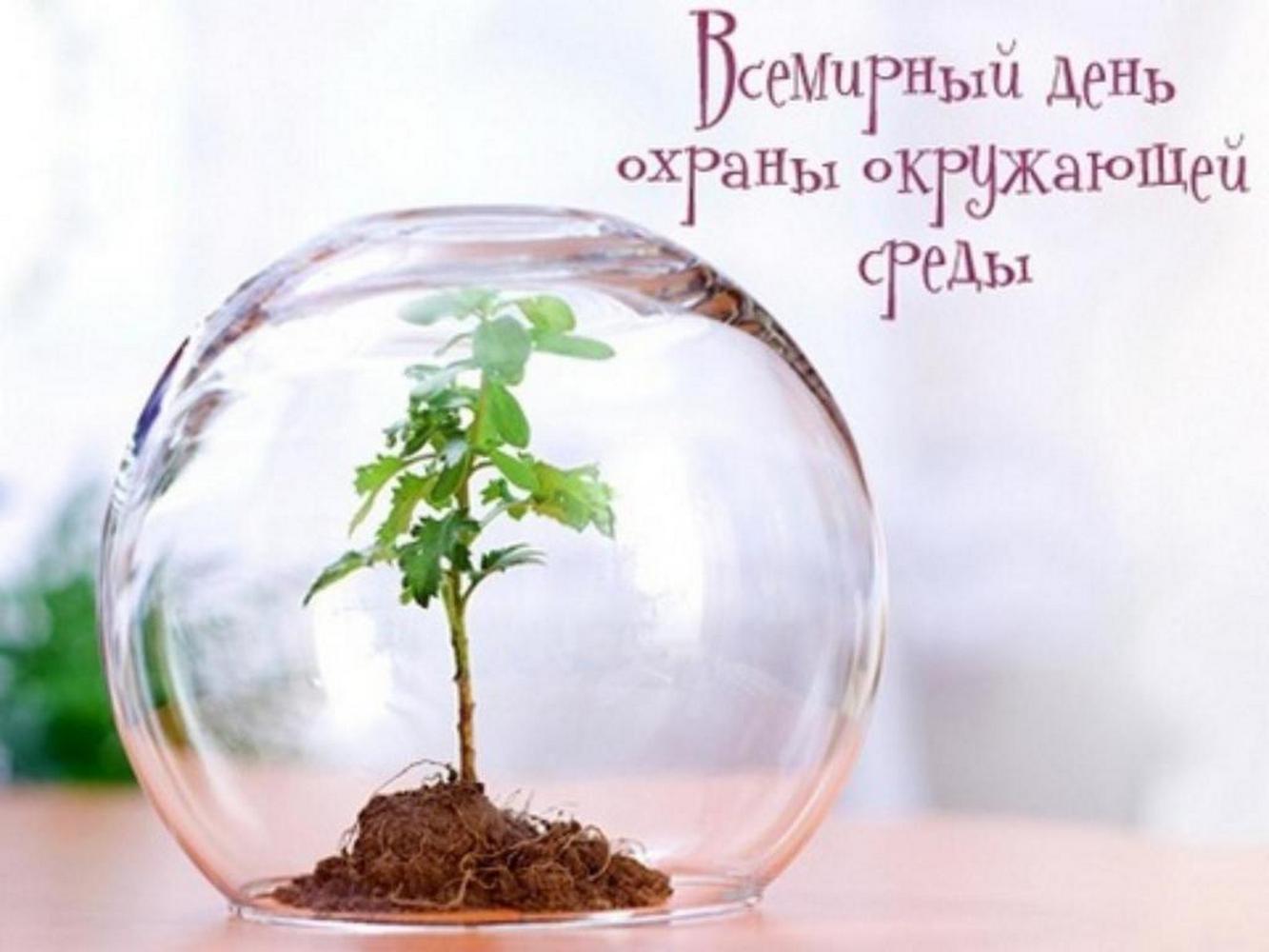 всемирный день защиты окружающей среды
