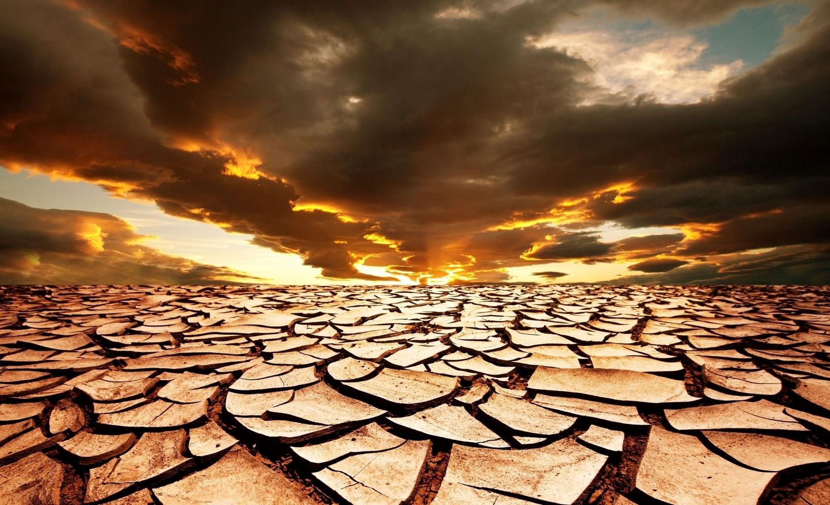 загрязнение почвы последствия