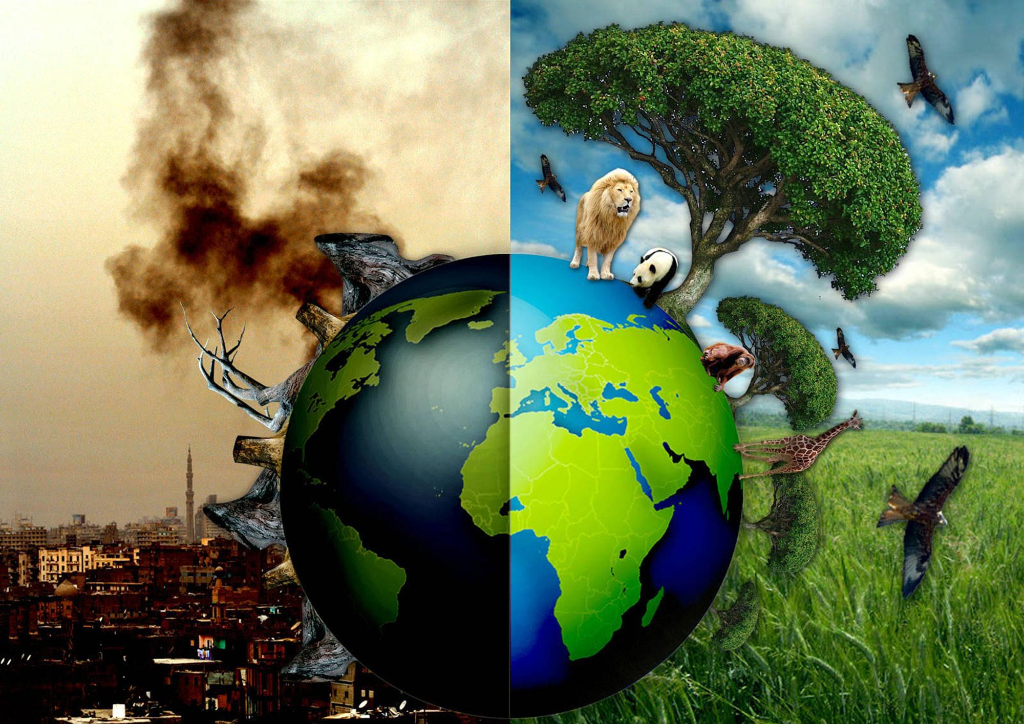 Влияние человека на экологию