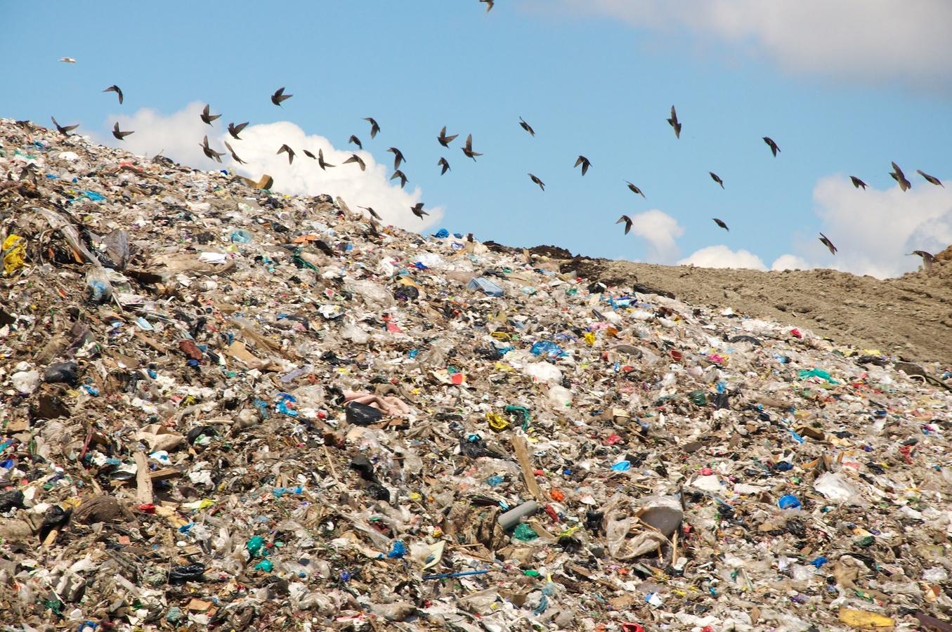 Что такое физическое загрязнение