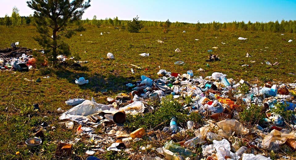 биологические загрязнения