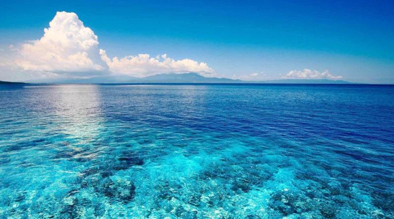 Экологические проблемы Мирового океана