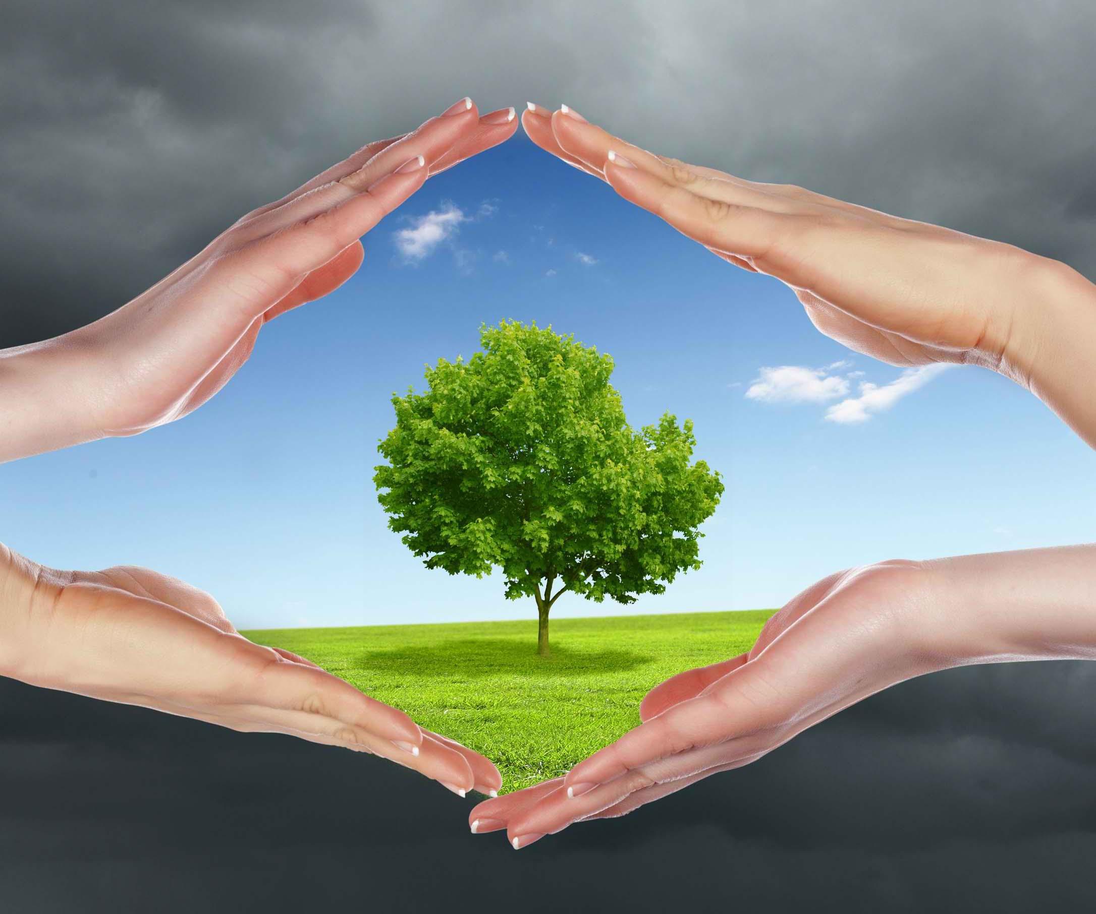 как бороться с загрязнением воздуха
