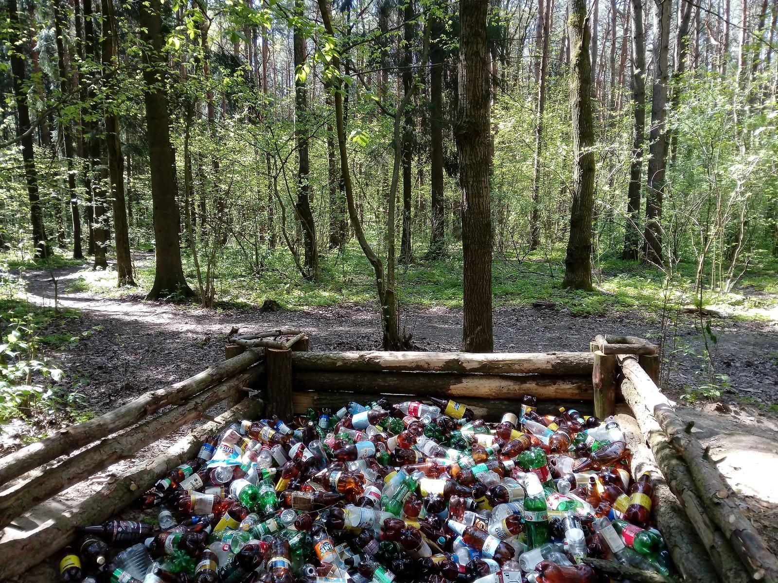 Пластик в лесу