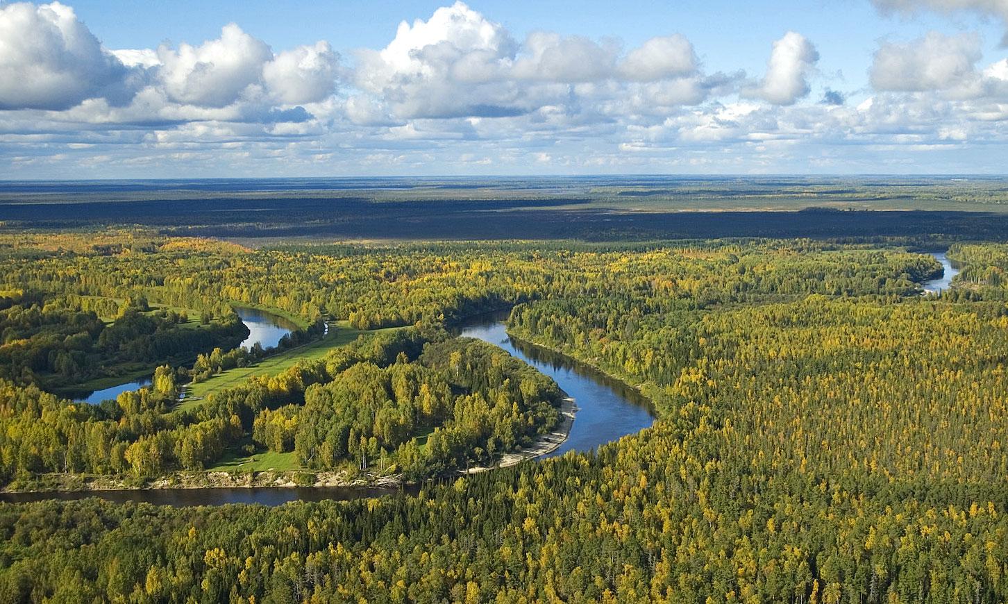 Экологические проблемы Западно-Сибирской равнины