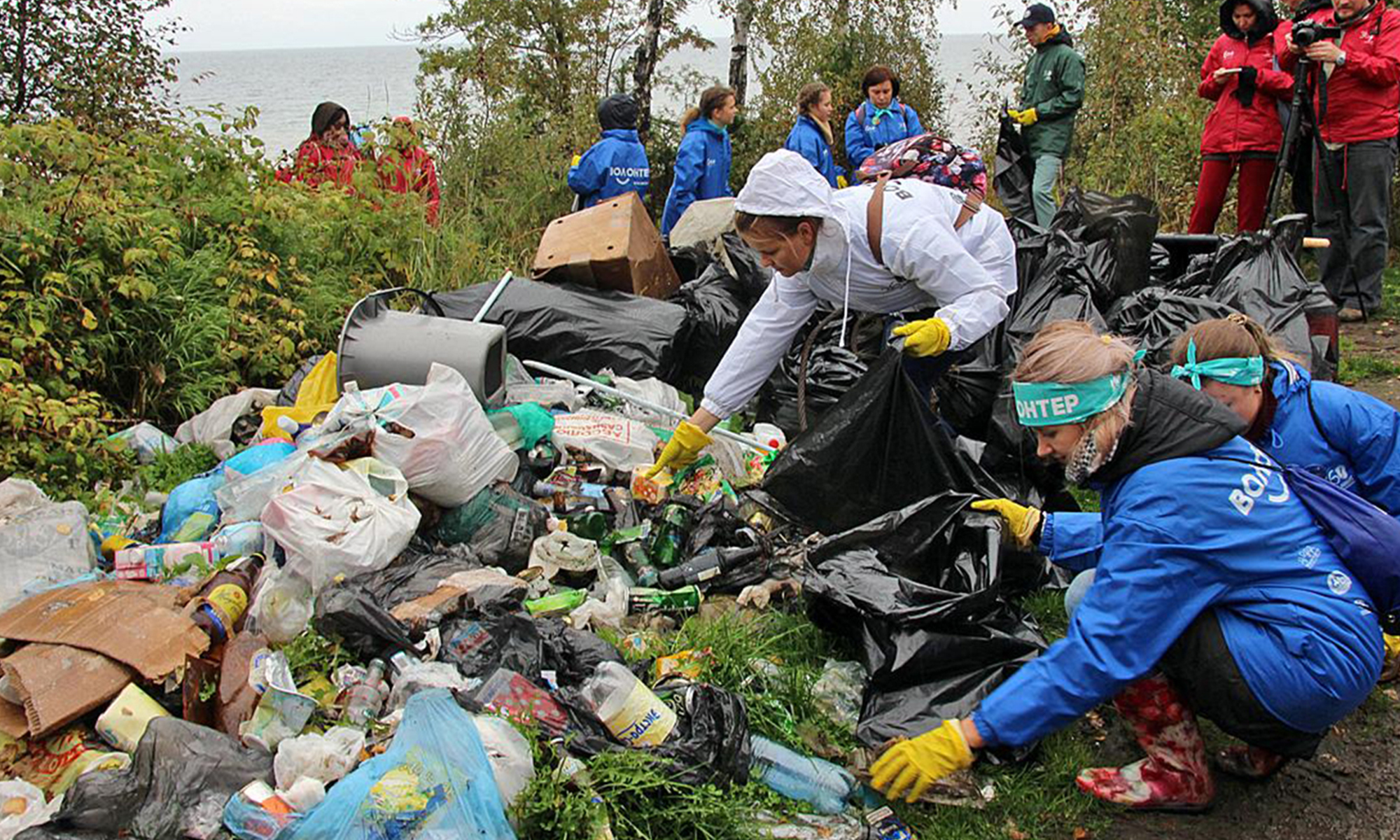 Волонтеры Рф