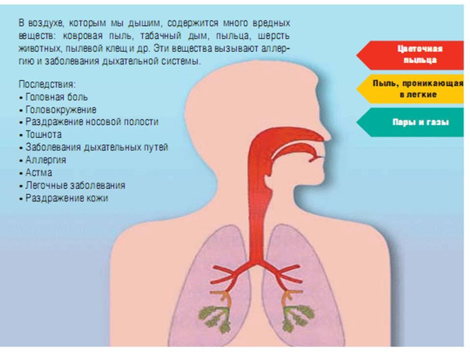 Последствия влияния грязного воздуха