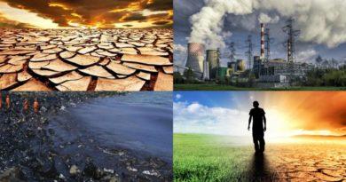 Экологические проблемы