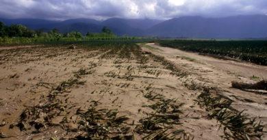 Экологические проблемы в сельском хозяйстве