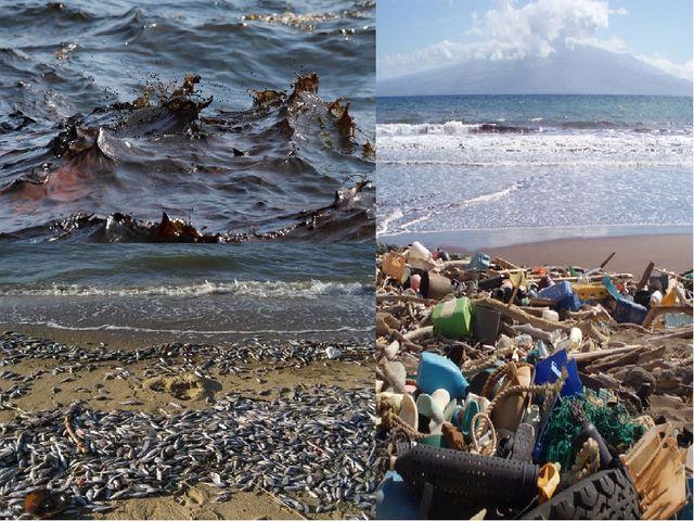 Экологические проблемы Каспия