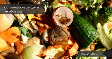 органические отходы