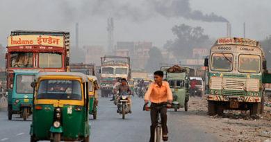 Экологические проблемы Индии