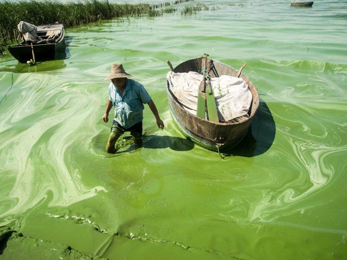 Загрязнение водных ресурсов ДВ