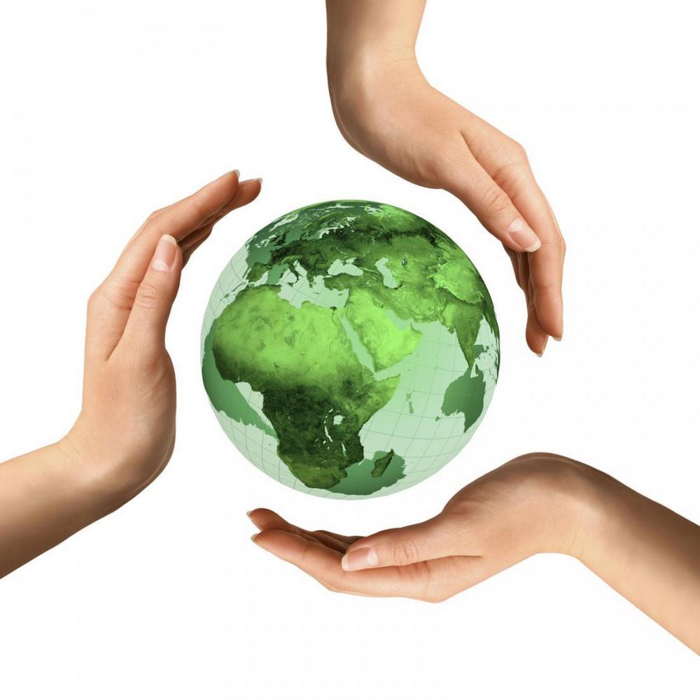 экологический мониторинг эмблема
