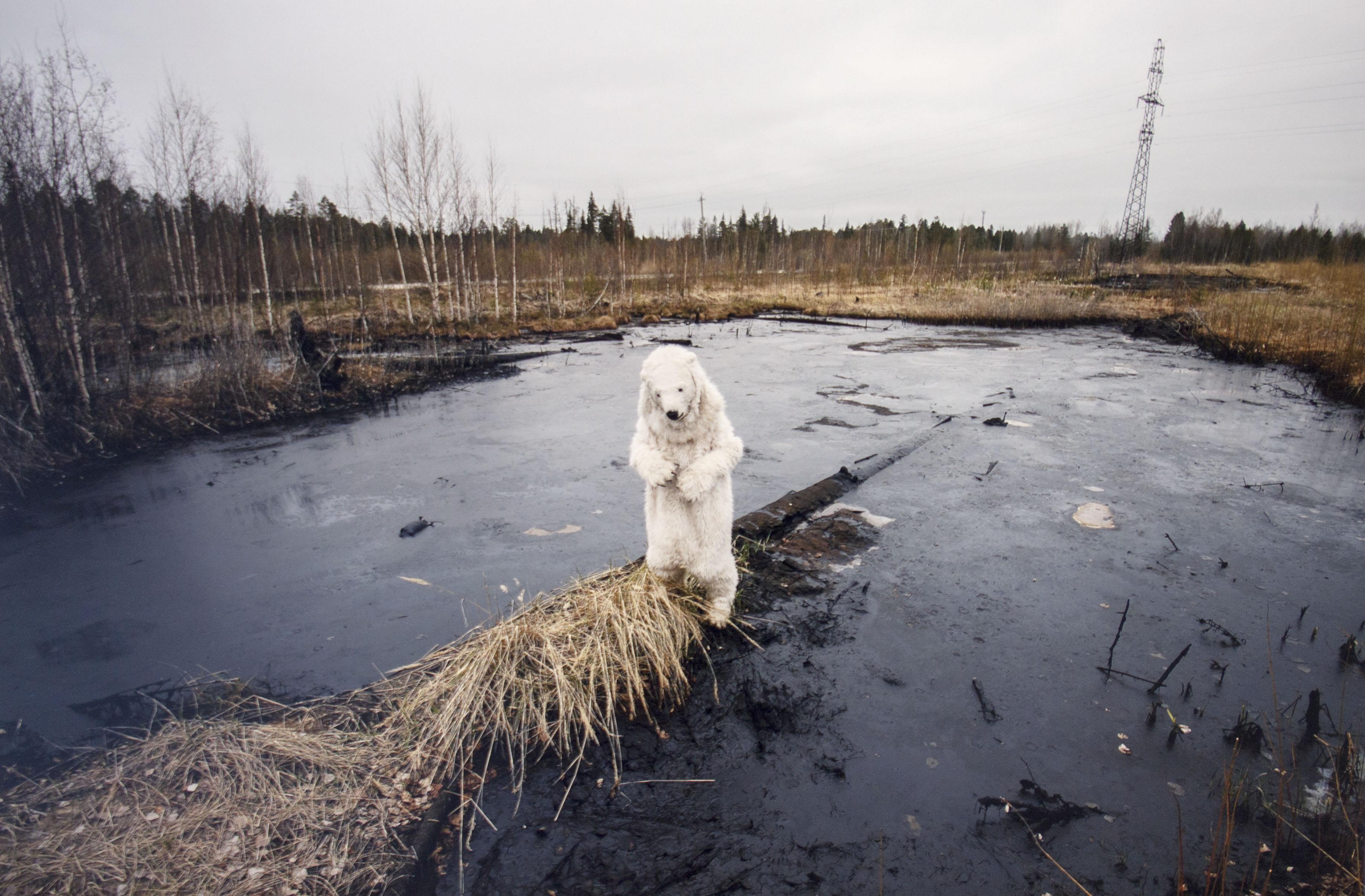 нефтяное загрязнение в тундре