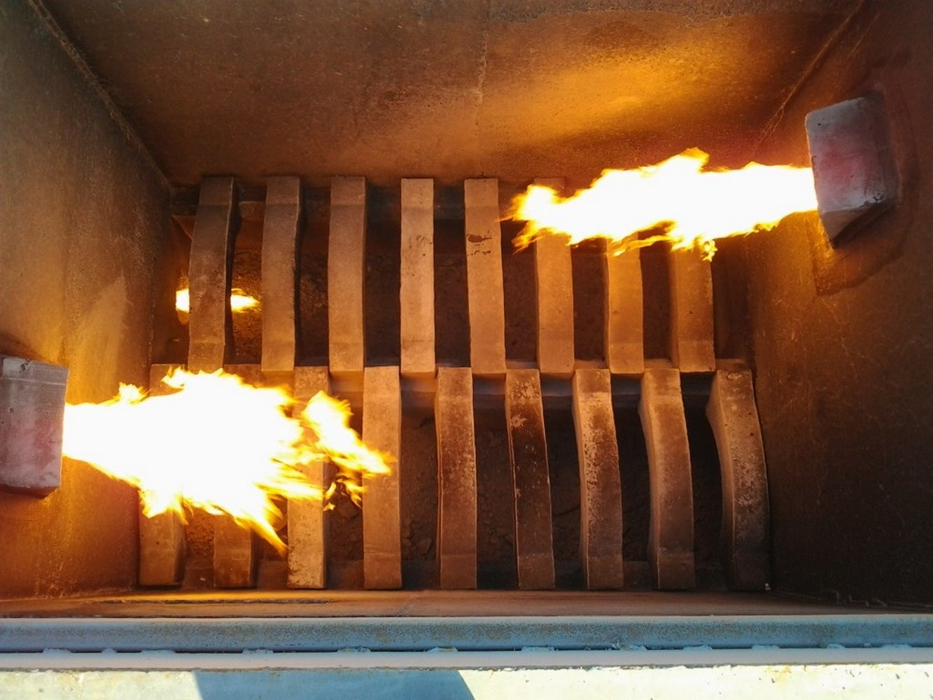 сжигание биологических отходов