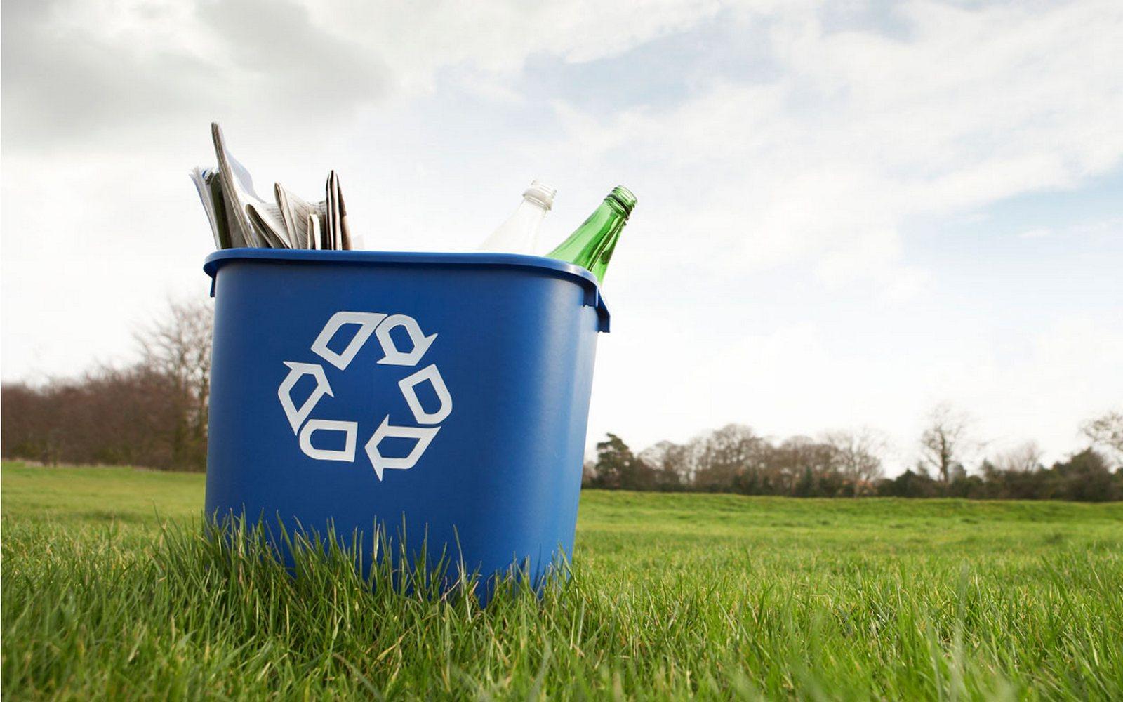 15 ноября день вторичной переработки мусора